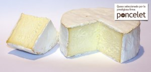 Brillat Savarin-poncelet